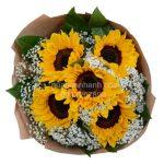 hoa bó- hoa hướng dương vs hoa baby