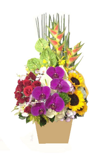 hoa giỏ ô1