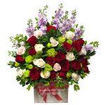 hoa giỏ 2a
