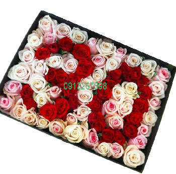 hoa hộp-hoa tình yêu 04