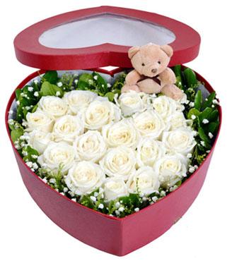 hoa hộp -hoa tình yêu 05