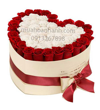 hoa hộp- hoa tình yêu 14