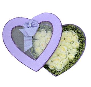 hoa hộp 16