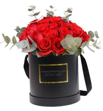 hoa hộp 17